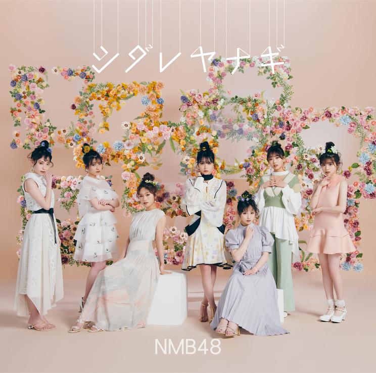 「シダレヤナギ」Type-A【CD+DVD】(©NMB48)