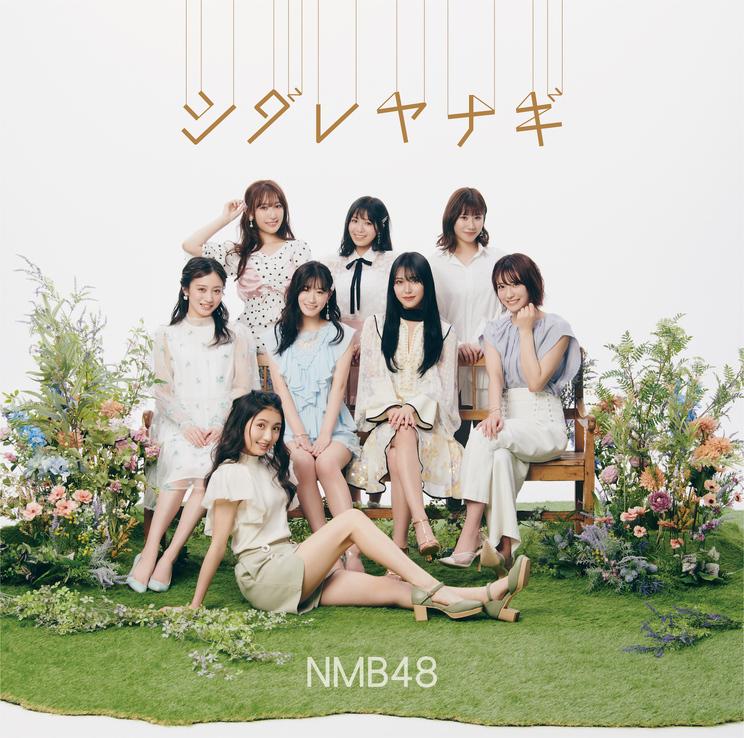 「シダレヤナギ」Type-B【CD+DVD】(©NMB48)