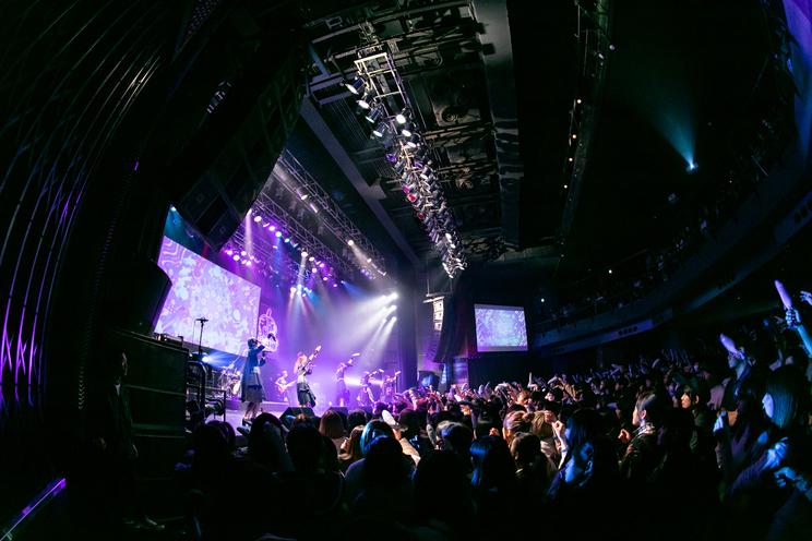 26時のマスカレイド|2019年2月6日(水)東京・渋谷TSUTAYA O-EAST<2月6日のマスカレイド~今宵はバンドで踊りましょ?~>より