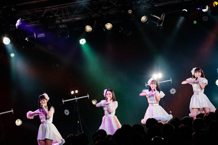 なんきんペッパー<GIG TAKAHASHI tour 2019>より|2019年6月2日(日)新宿BLAZE