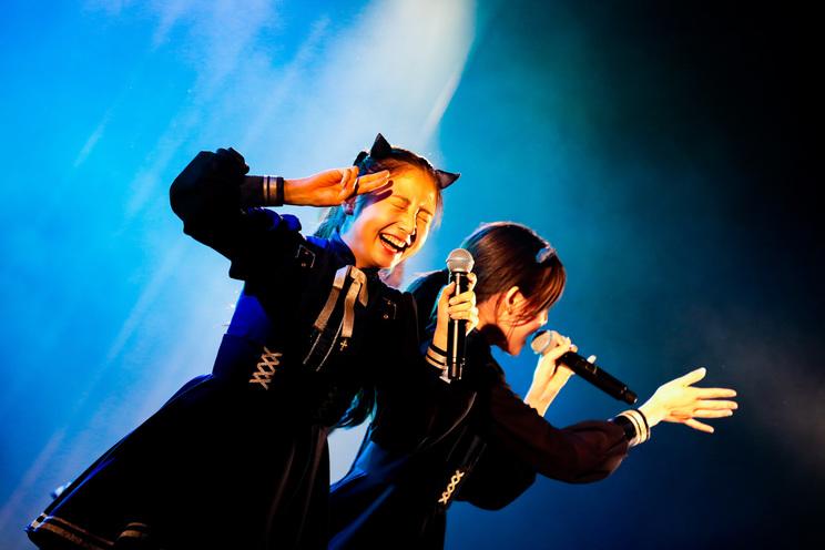 Devil ANTHEM.<GIG TAKAHASHI tour 2019>より|2019年6月2日(日)新宿BLAZE