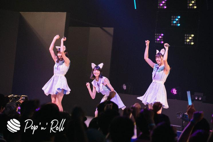 Task have Fun×わーすた <TOKYO IDOL FESTIVAL 2019>| DOLL FACTORY(17:20-)