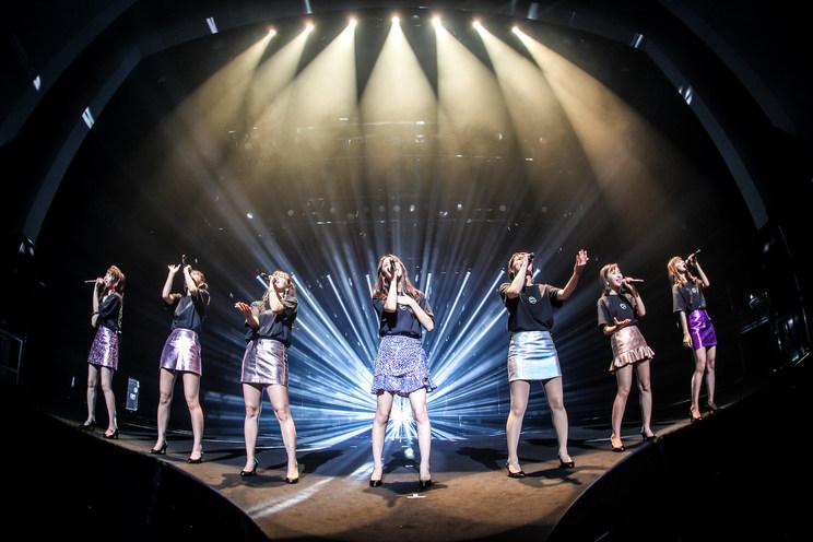<predia path anniversary tour 2019[SHINKA]FINAL presents by LIVE DAM Ai> 横浜関内ホール(2019年11月24日)