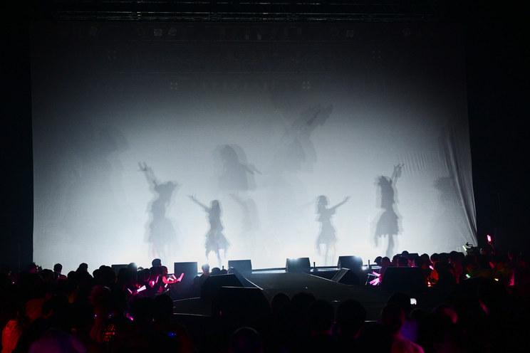 PHOTO:本間裕介