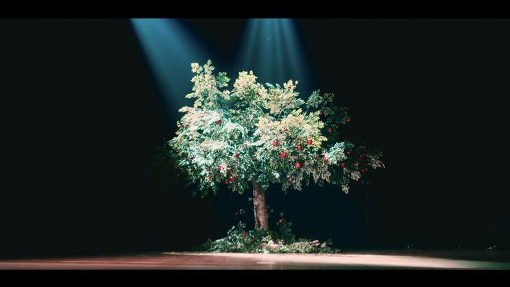 「りんごの木」MVより