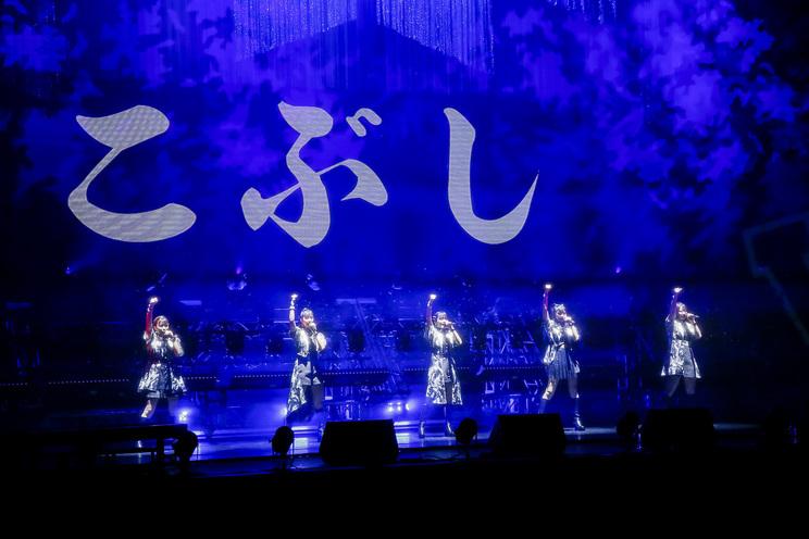 <こぶしファクトリー ライブ2020 〜The Final Ring!〜>より