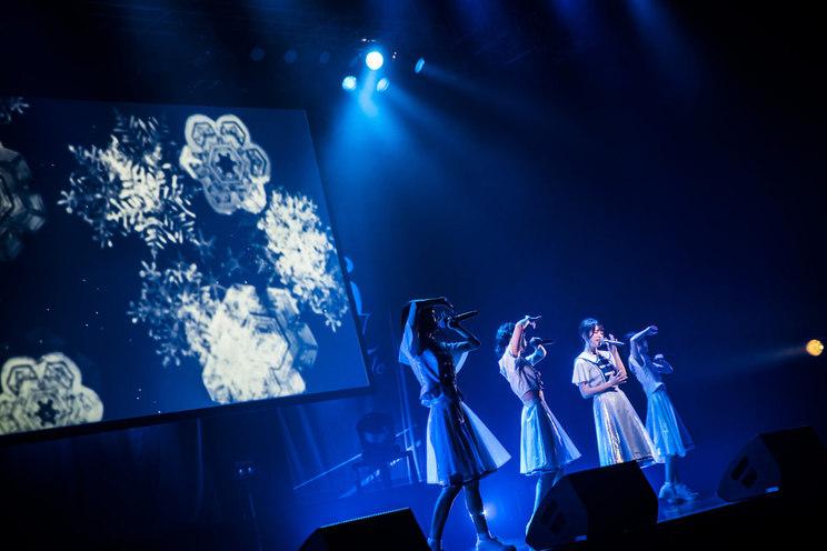 26時のマスカレイド<26時のマスカレイド 新メンバー発表ライブ>(2020年6月21日)