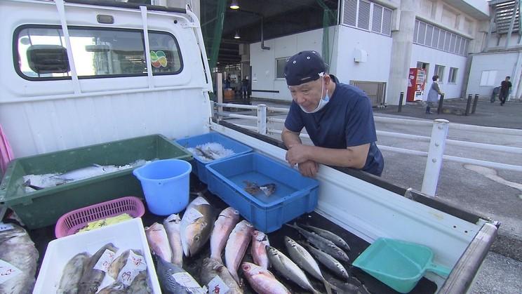 魚ヤバイヤー