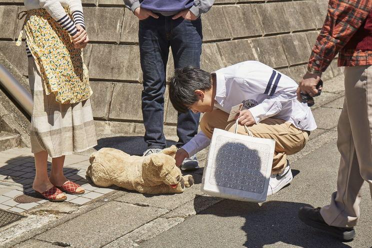 ©⻄加奈⼦/⼩学館 ©2020「さくら」製作委員会