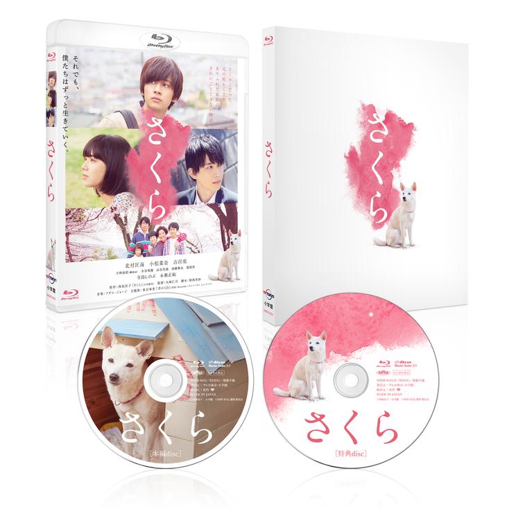 映画『さくら』Blu-ray豪華版 ©西加奈子/小学館 ©2020「さくら」製作委員会