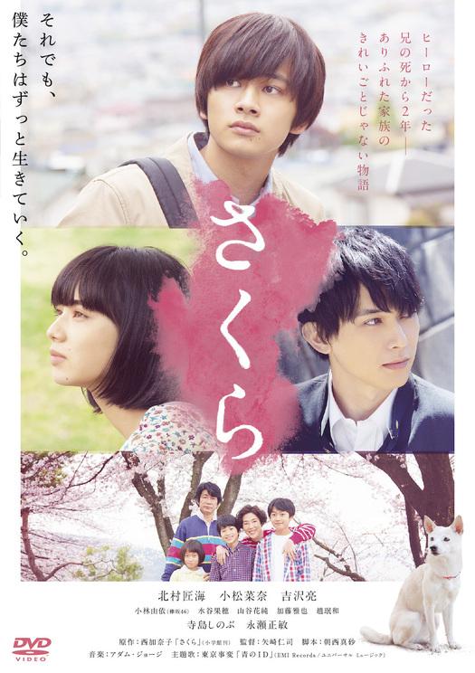 映画『さくら』DVD ©西加奈子/小学館 ©2020「さくら」製作委員会