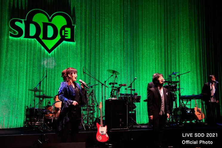 渡辺美里&STARDUST REVUE<LIVE SDD 2021>(2021年2月13日)
