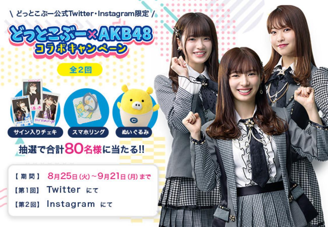 AKB48 武藤十夢・武藤小麟・中西智代梨、サイン入りグッズが当たるチャンス! 『どっとこぶー』とのコラボキャンペーンスタート