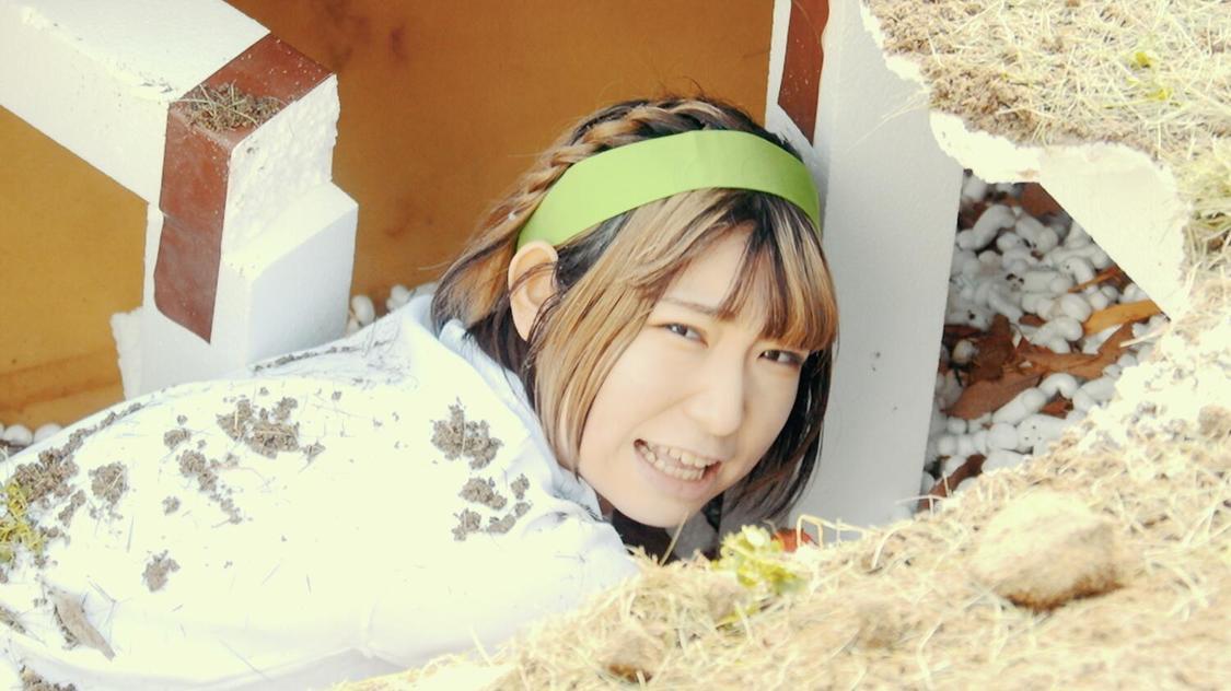 豆柴の大群、メンバーがバラエティ鉄板ネタに体を張る「走れ豆柴」MV公開!