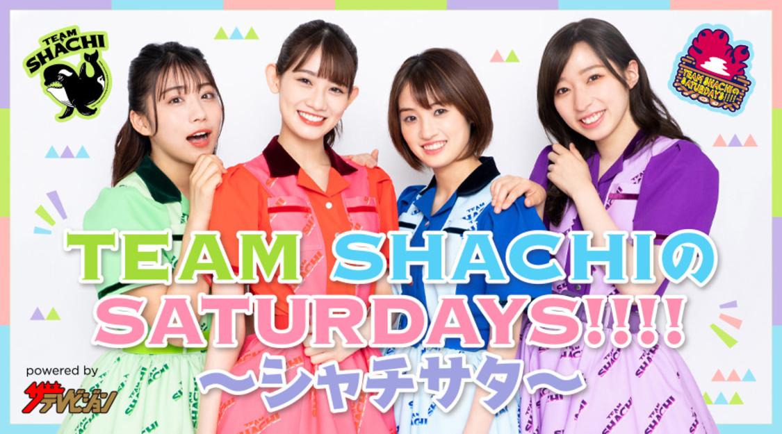 """TEAM SHACHI、テーマは""""今までみせたことのないシャチ""""! ニコニコチャンネル『TEAM SHACHIのSATURDAYS!!!! ~シャチサタ~』開設"""