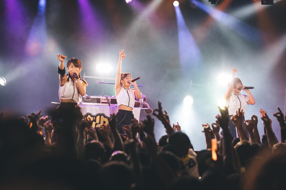 【ライブレポート】あゆみくりかまき、ファンの垣根を超えた縦横無尽な熱狂ライブ