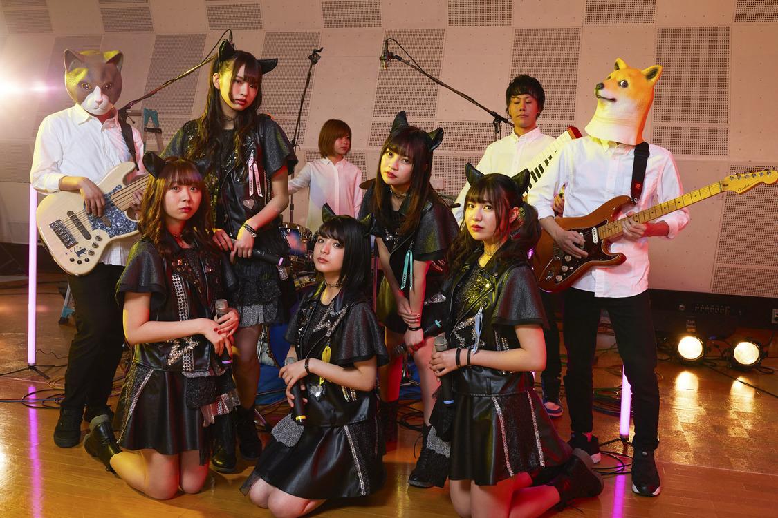 """わーすた、STUDIO LIVE第3弾で""""うるチョコ""""&隠れた名曲を披露!"""