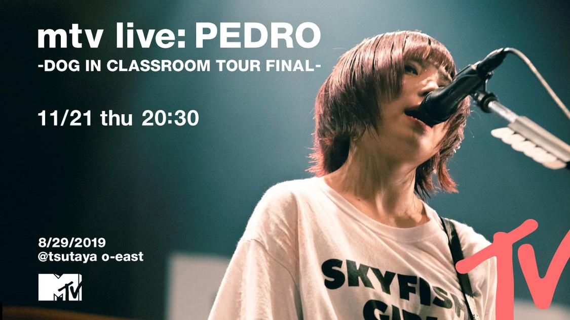 PEDRO、全国ツアーファイナルTSUTAYA O-EAST公演をMTVにて独占放送決定!