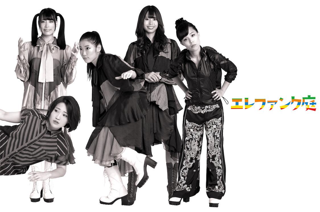 エレファンク庭、所属事務所で華麗に踊る「Romantic Discotheque」MV公開!