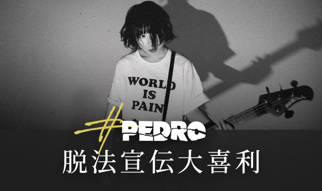 PEDRO、8月に1st SG決定!100万円プレゼント企画「#PEDRO脱法宣伝大喜利」スタート