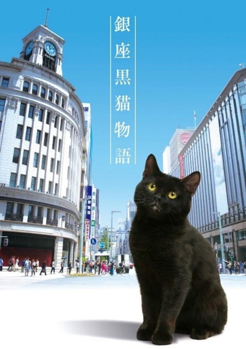 秋元才加、永尾まりやら出演オリジナルドラマ『銀座黑猫物語』放送決定!